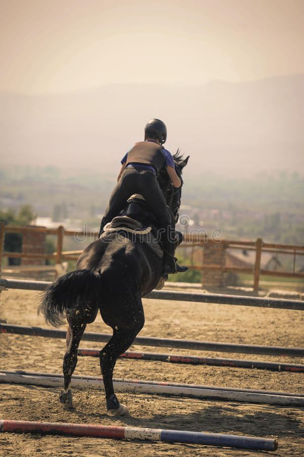 Jockey riding a fast thoroughbred horse. Equestrian sports, Black horse approaching.The jump, shooting from the rear. Jockey riding a fast thoroughbred horse royalty free stock images