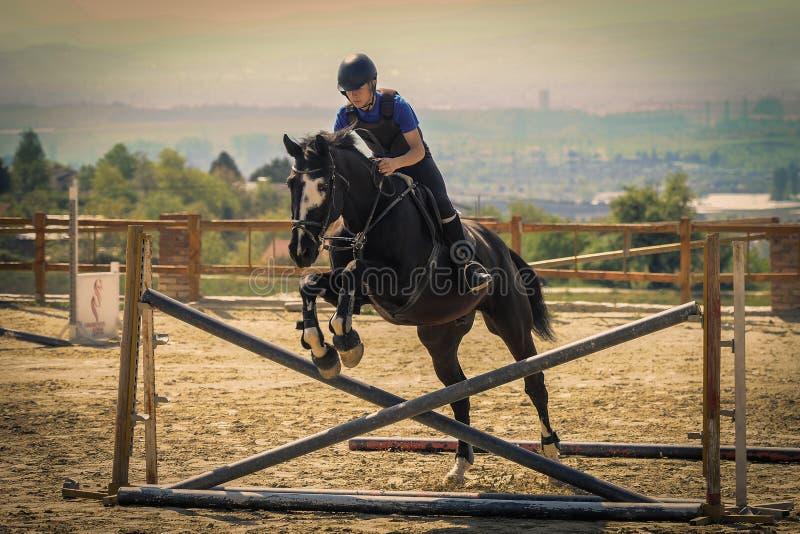 Jockey riding a fast thoroughbred horse stock photo
