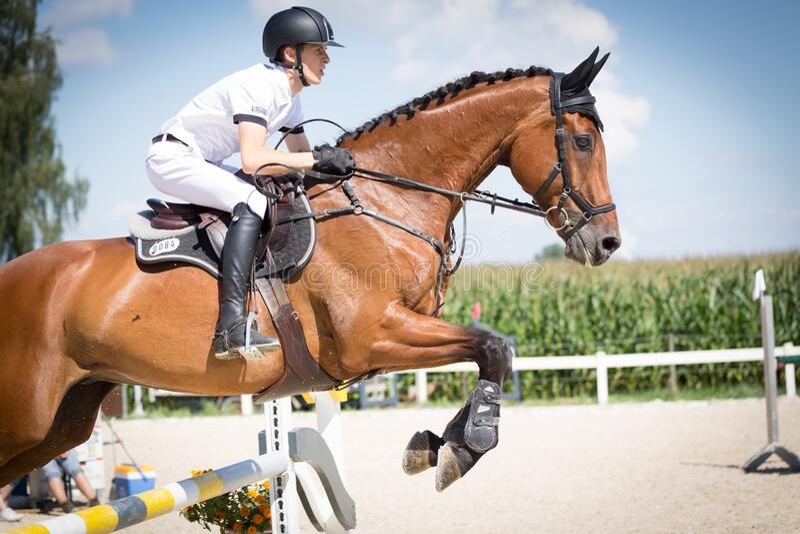 Jockey Riding on Horse on Hurdle stock photos