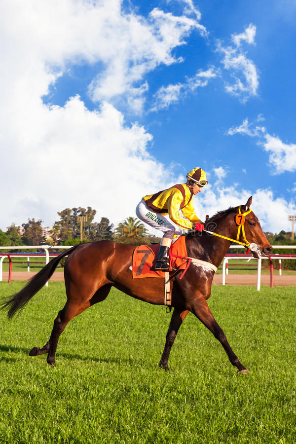 Jockey. A jockey riding at the San Isidro's Hippodrome in Buenos Aires, Argentina stock photo