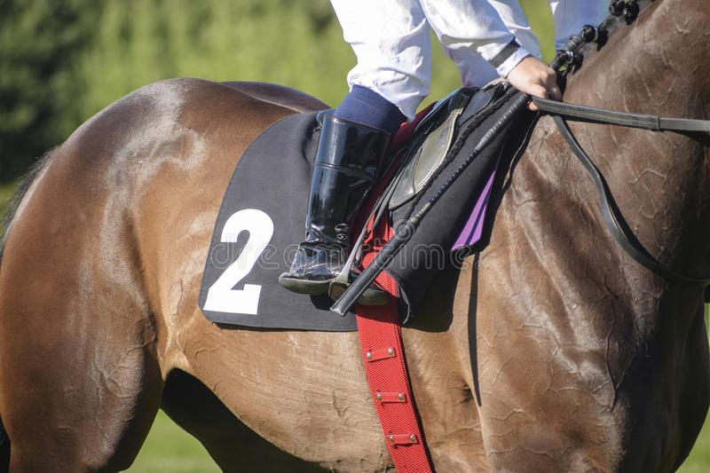 jockey in the saddle at a horse race with the starting number two stock photography