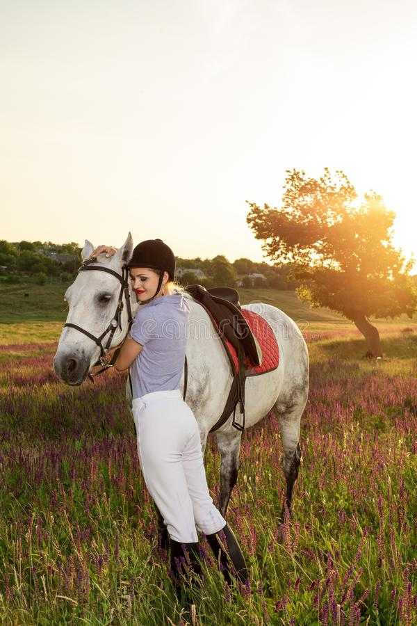 Jockey young girl petting and hugging white horse in evening sunset. Sun flare. Taking care of animals, love and friendship concept. Jockey young girl petting stock photos