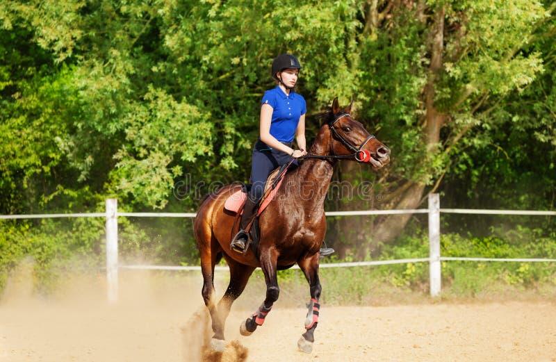 Jockeyflicka och showbanhoppninghäst på löparbanan royaltyfria bilder