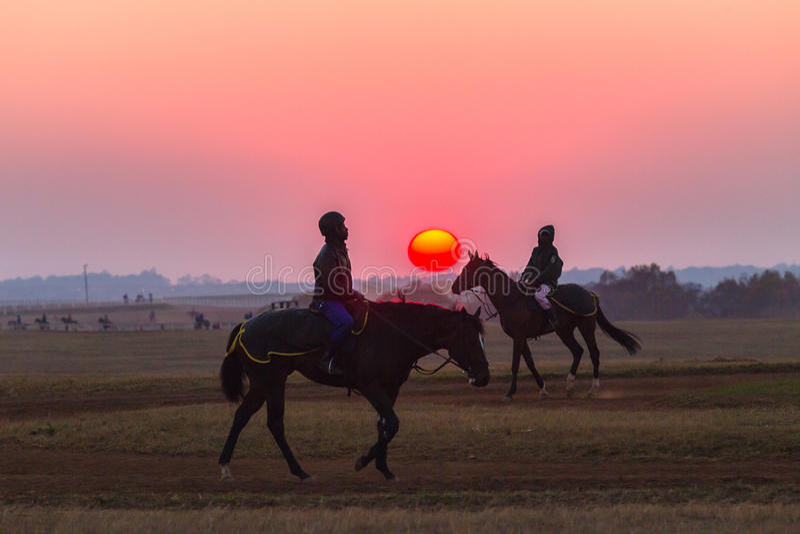 Jockeys de mariés de chevaux de course formant l'aube image libre de droits