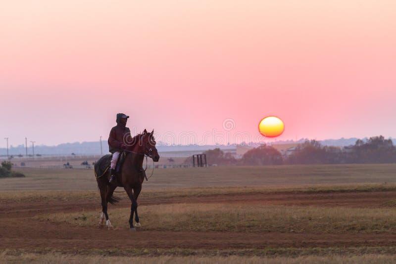 Jockeys de mariés de chevaux de course formant l'aube photo libre de droits
