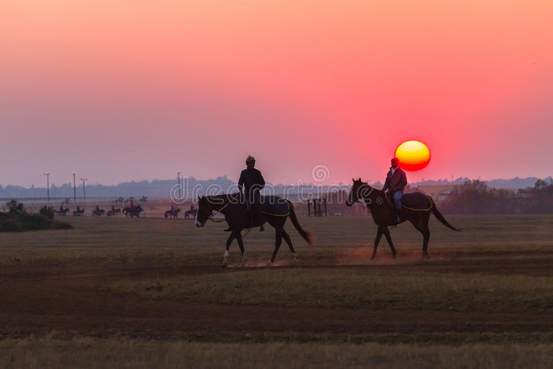 Jockeys de mariés de chevaux de course formant l'aube photographie stock libre de droits