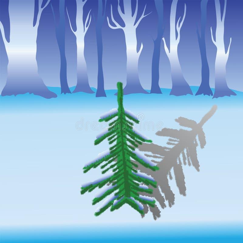 Download Jodła ilustracja wektor. Ilustracja złożonej z sezon - 28961646