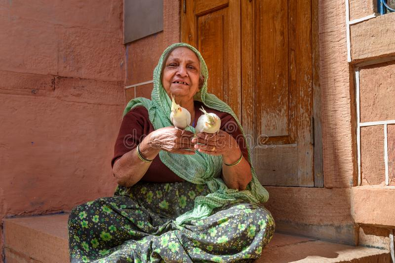 Senior woman with parrots in traditonal sari on street of Blue City of Jodhpur. Rajasthan. India. Jodhpur, India - February 09, 2019: Senior woman with parrots royalty free stock photography