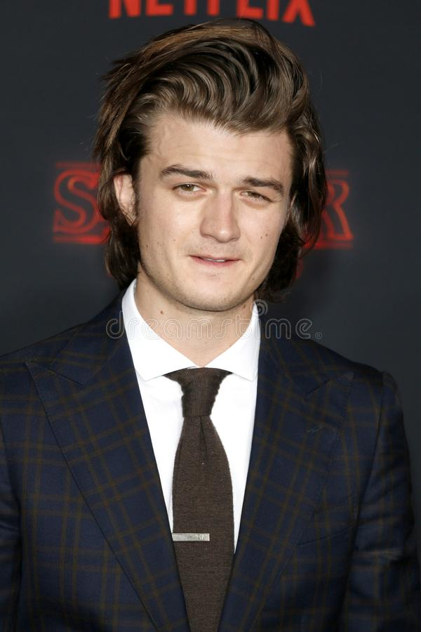 Joe Keery. At the Netflix`s season 2 premiere of `Stranger Things` held at the Regency Village Theatre in Westwood, USA on October 26, 2017 royalty free stock photo