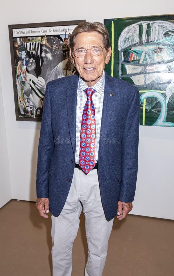 Joe Namath em Art New York fotos de stock royalty free