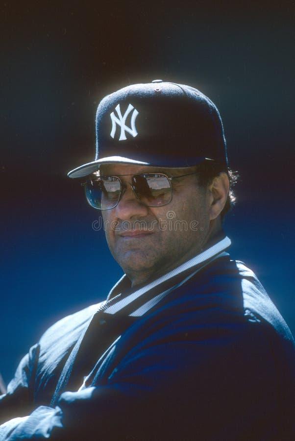 Joe Torre New York Yankees imagens de stock