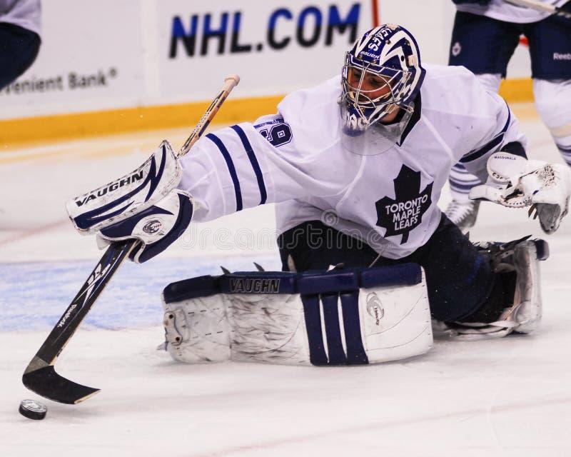 Joey MacDonald, Toronto Maple Leafs-Tormann lizenzfreie stockbilder