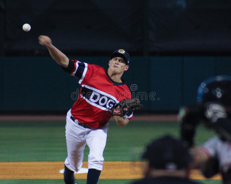 Joey Maher, Charleston RiverDogs photographie stock