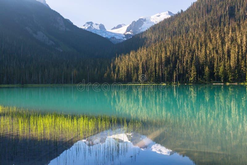 Joffre Lake royalty-vrije stock foto