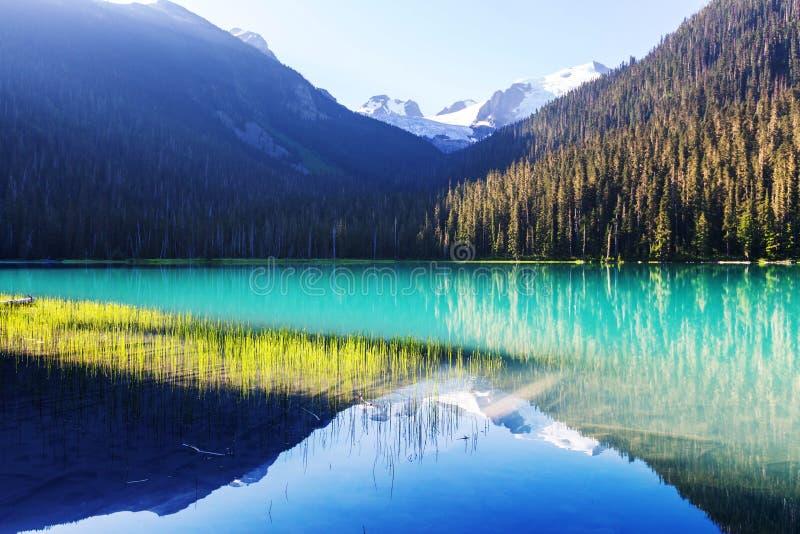 Download Joffre Lake stockbild. Bild von clear, kanada, anspornen - 90227027
