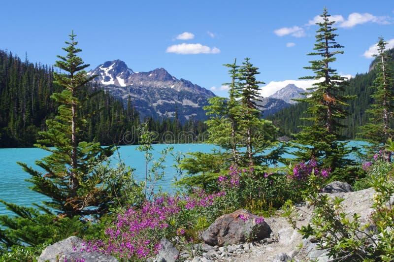 Joffre Lakes Provincial Park. Near Pemberton, BC, Canada stock photo