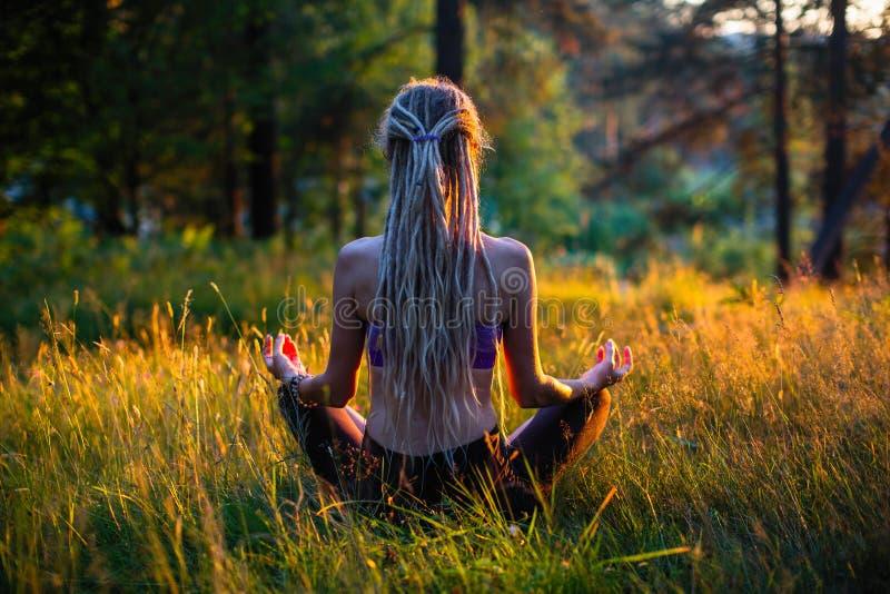 Joga kobiety sylwetka w Lotosowej pozie na malowniczej haliźnie w lesie fotografia royalty free