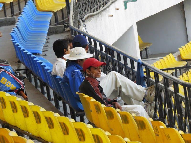 Jogador de cricket novo imagens de stock royalty free