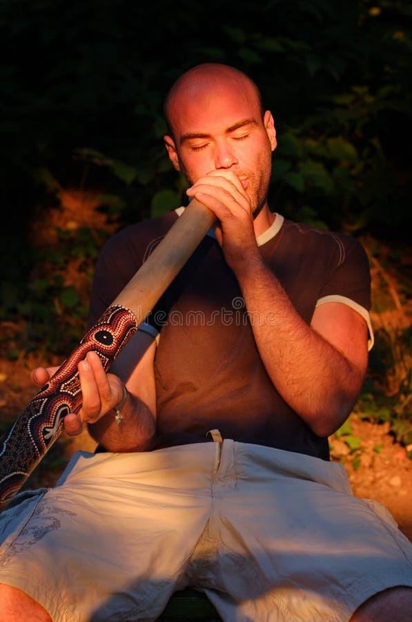 Jogador de Didgeridoo imagens de stock royalty free