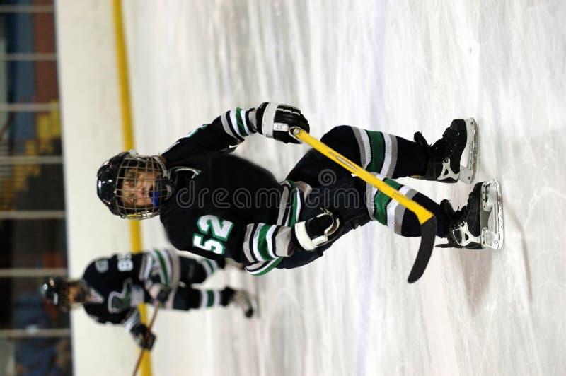 Jogador de hóquei do gelo fotografia de stock royalty free