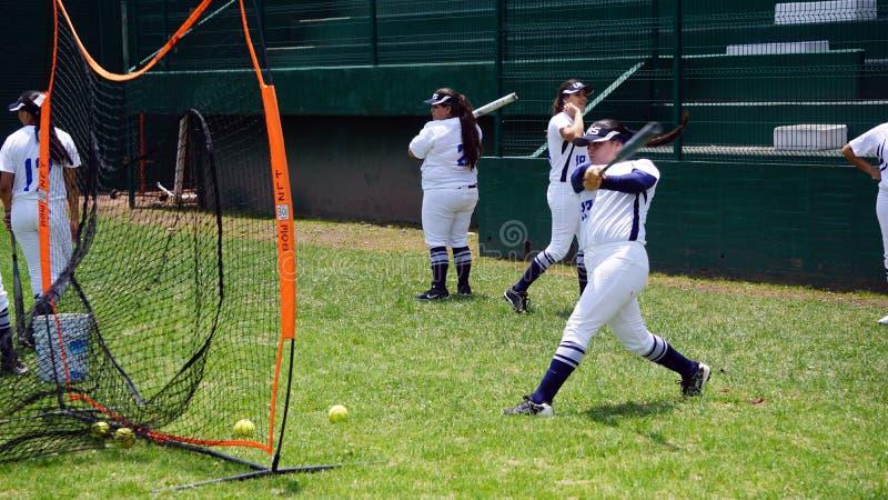 Jogador de softball fêmea fotografia de stock royalty free