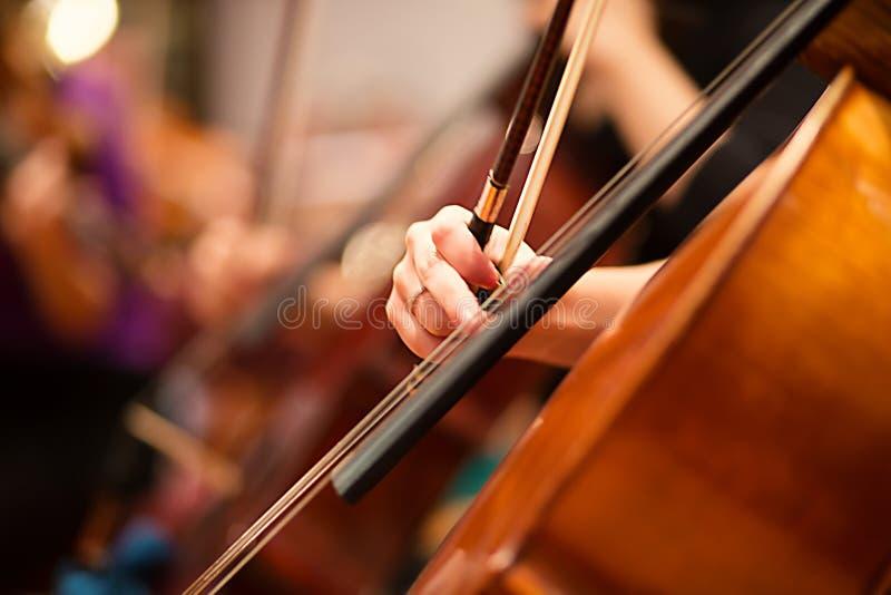Jogador do violoncelo que executa em uma orquestra fotos de stock royalty free