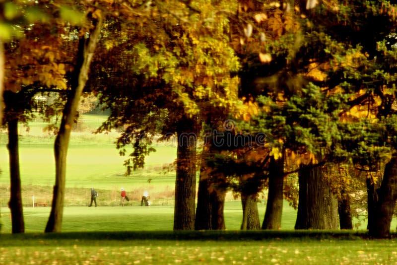 Jogadores de golfe fotografia de stock royalty free