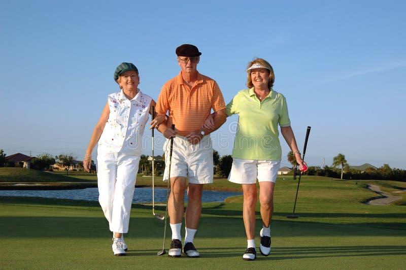 Jogadores de golfe felizes imagem de stock royalty free