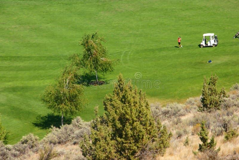 Jogadores de golfe no fairway verde-claro fotografia de stock royalty free
