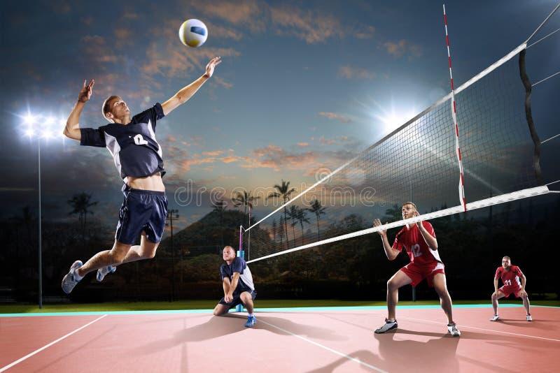 Jogadores de voleibol profissionais na ação na corte de noite imagens de stock