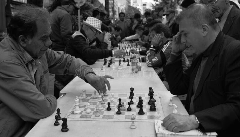 Jogadores de xadrez fotografia de stock