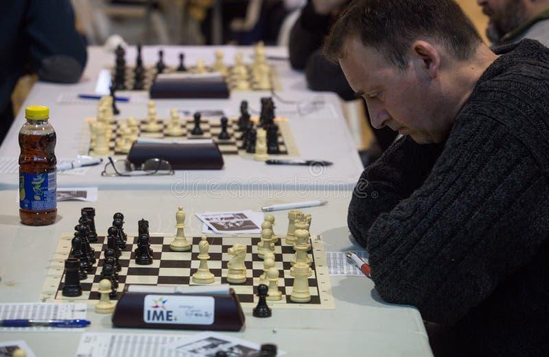 Jogadores de xadrez durante gameplay em um competiam local imagens de stock royalty free