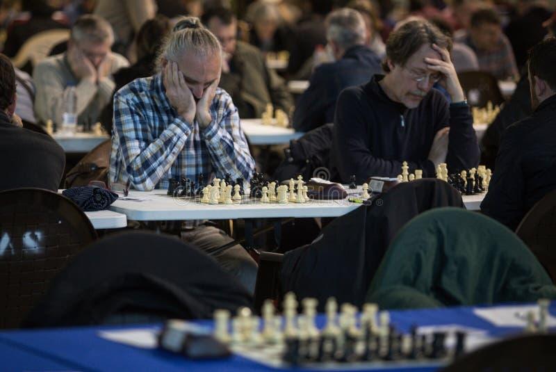 Jogadores de xadrez durante gameplay em um competiam local largamente fotografia de stock