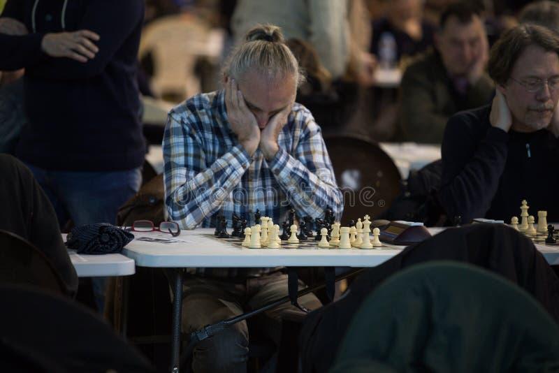 Jogadores de xadrez durante gameplay em um detalhe local do competiam foto de stock royalty free