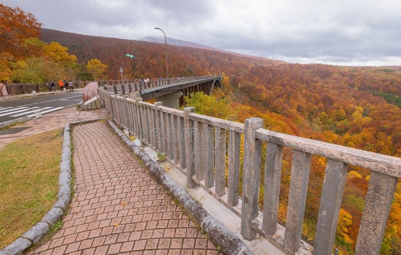 Jogakura bridge, mountain and valley with beautiful autumn season colors. royalty free stock images