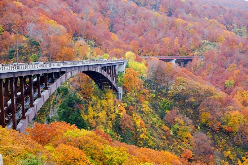 Jogakura bro i höst, en underbar sikt av den Jyogakura-keiryu strömmen royaltyfri fotografi
