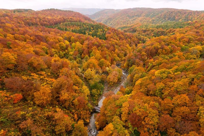 Jogakura dolina w pięknym jesień sezonie obraz stock