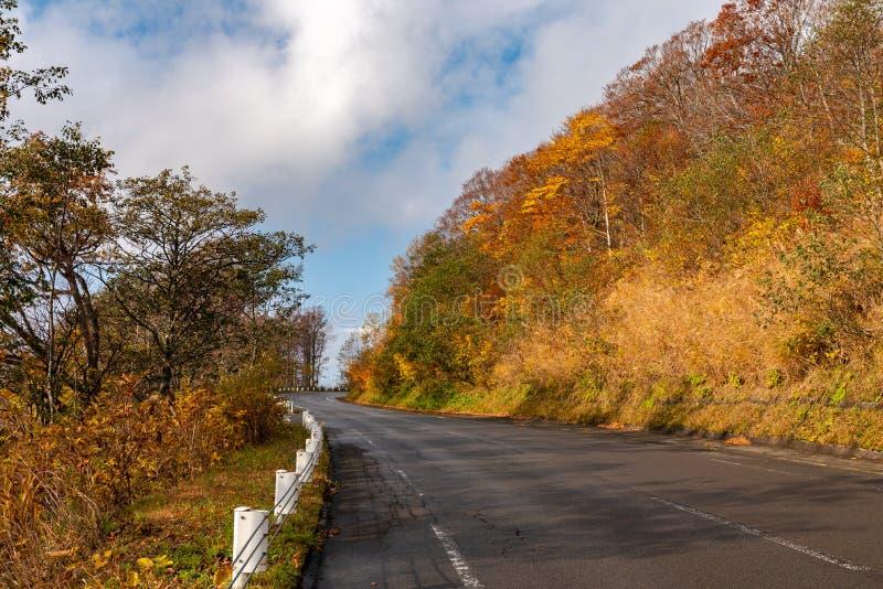 Jogakura Ohashi mostu widok podczas jesieni ulistnienia sezonu zdjęcie royalty free