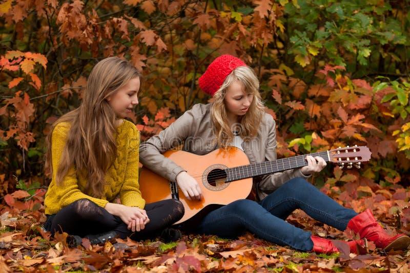 Jogando a guitarra nas madeiras fotografia de stock