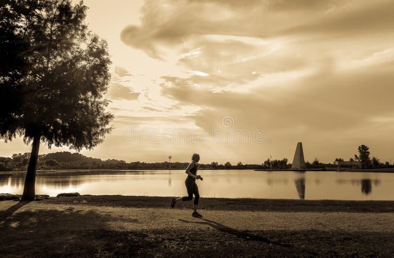 Jogger στο πάρκο μετά από την εργασία στοκ εικόνες