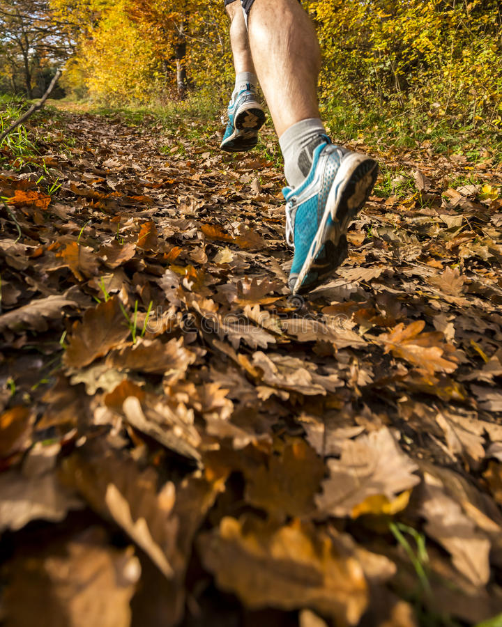 Jogger το φθινόπωρο στοκ εικόνα με δικαίωμα ελεύθερης χρήσης