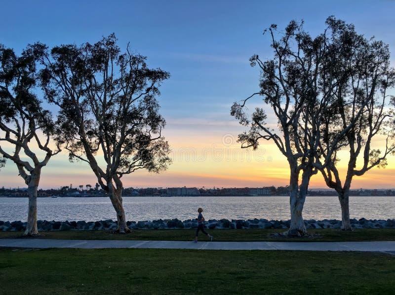 Jogger бежать на заходе солнца вдоль парка портового района городского, Сан-Диего, стоковые фотографии rf