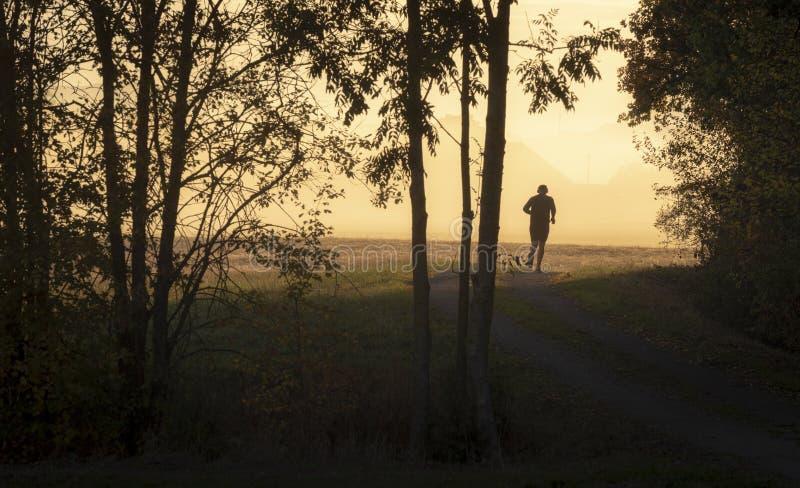 Jogger человека на восходе солнца стоковые изображения rf