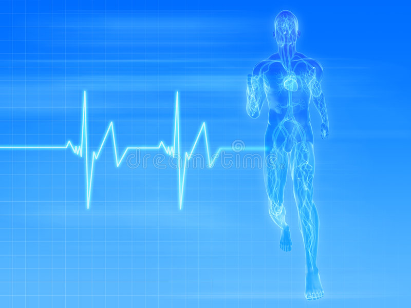 Jogger - pulse. 3d rendered illustration of a transparent jogger with vascular system and heartbeat royalty free illustration