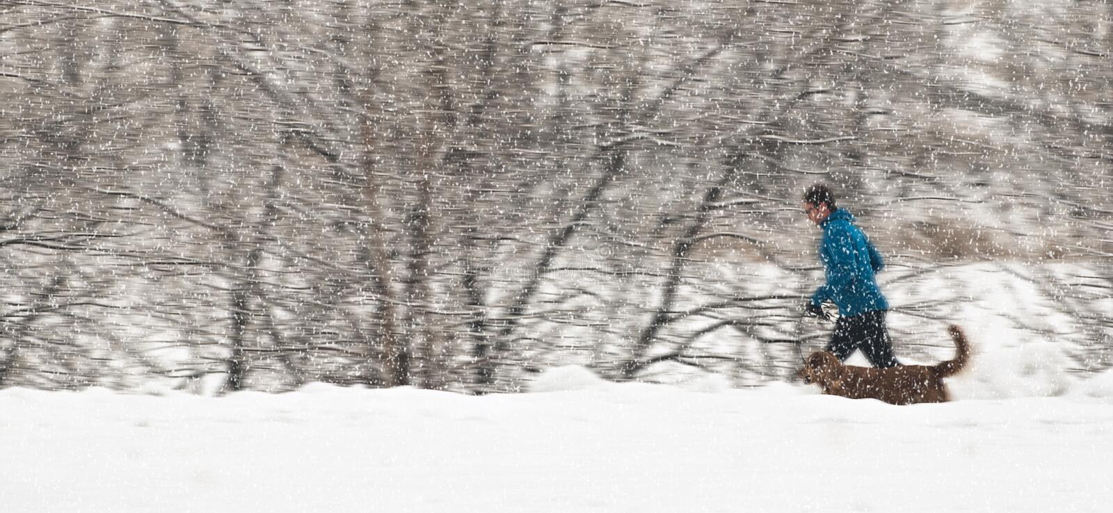 Jogger in the snow stock photography