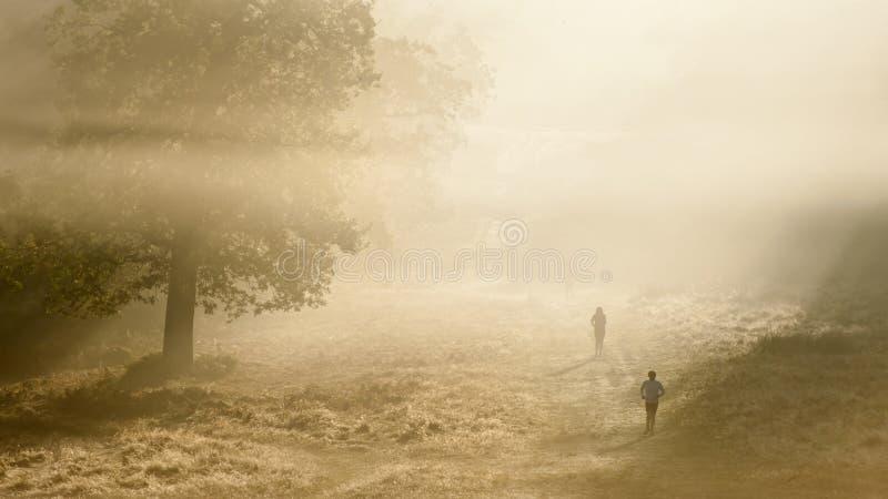 Joggers på en knaprig dimmig höstmorgon royaltyfria bilder
