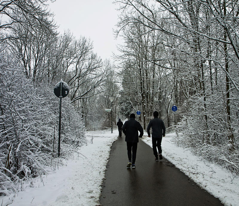 Joggers run on path among wood in wintertime. People go for a jog or a walk on path free of snow in wintertime stock photography