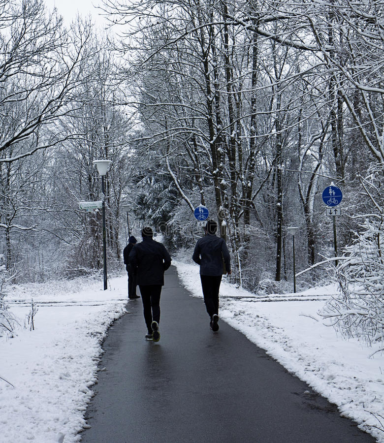 Joggers run on path among wood in wintertime. People go for a jog or a walk on path free of snow in wintertime stock photos