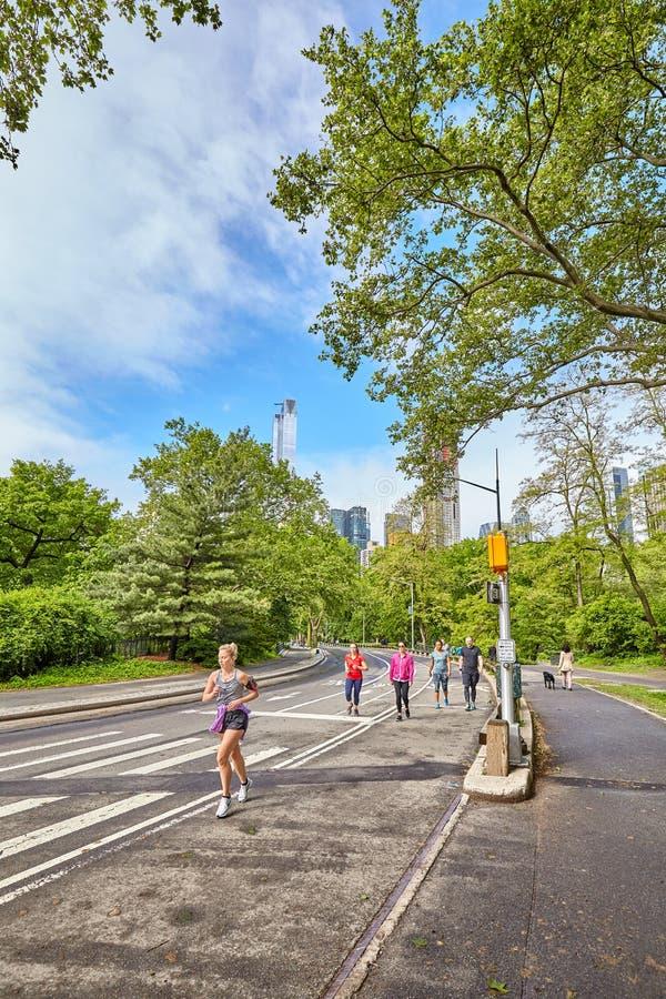 Joggers som kör till och med Central Park royaltyfri bild