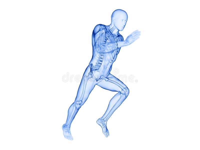 joggers zredukowani royalty ilustracja